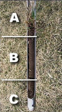 Prescription Soil Analysis, LLC - Directions on taking a Turf Soil ...